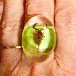 Jewelry - Lucite/resin encased taxidermy insect ring